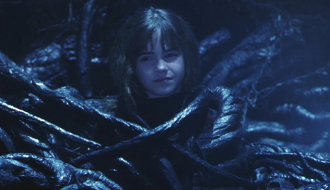 In Harry Potter and Sorcerer's Stone, Harry, Ron, and Hermione encountered Devil's Snare. Harry and Ron didn't know what to do, but since Hermione had read about Devil's Snare, she knew what to do and saved Ron and Harry from getting stuck in it.