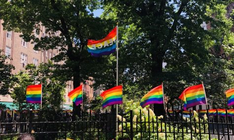 Pride Flags within Christopher Park, across the street from the Stonewall Inn. June,2019
