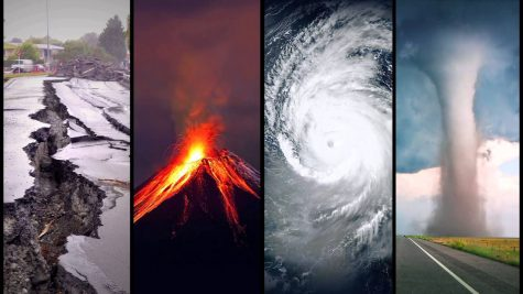 Senior Project: Natural Disasters and Crime
